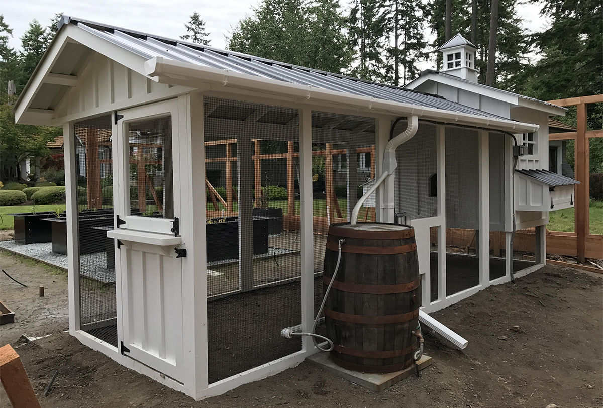 Attirant Large Chicken Coop Run With Custom Dutch Style Door.