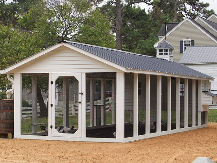 Carolina Coops-options-size of chicken coop