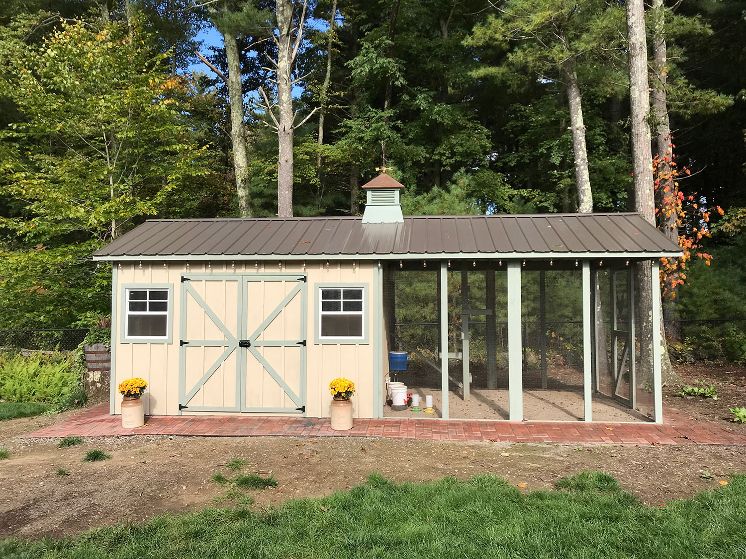 Carolina Coops - Custom Shed-Henhouse combo chicken coop (1)