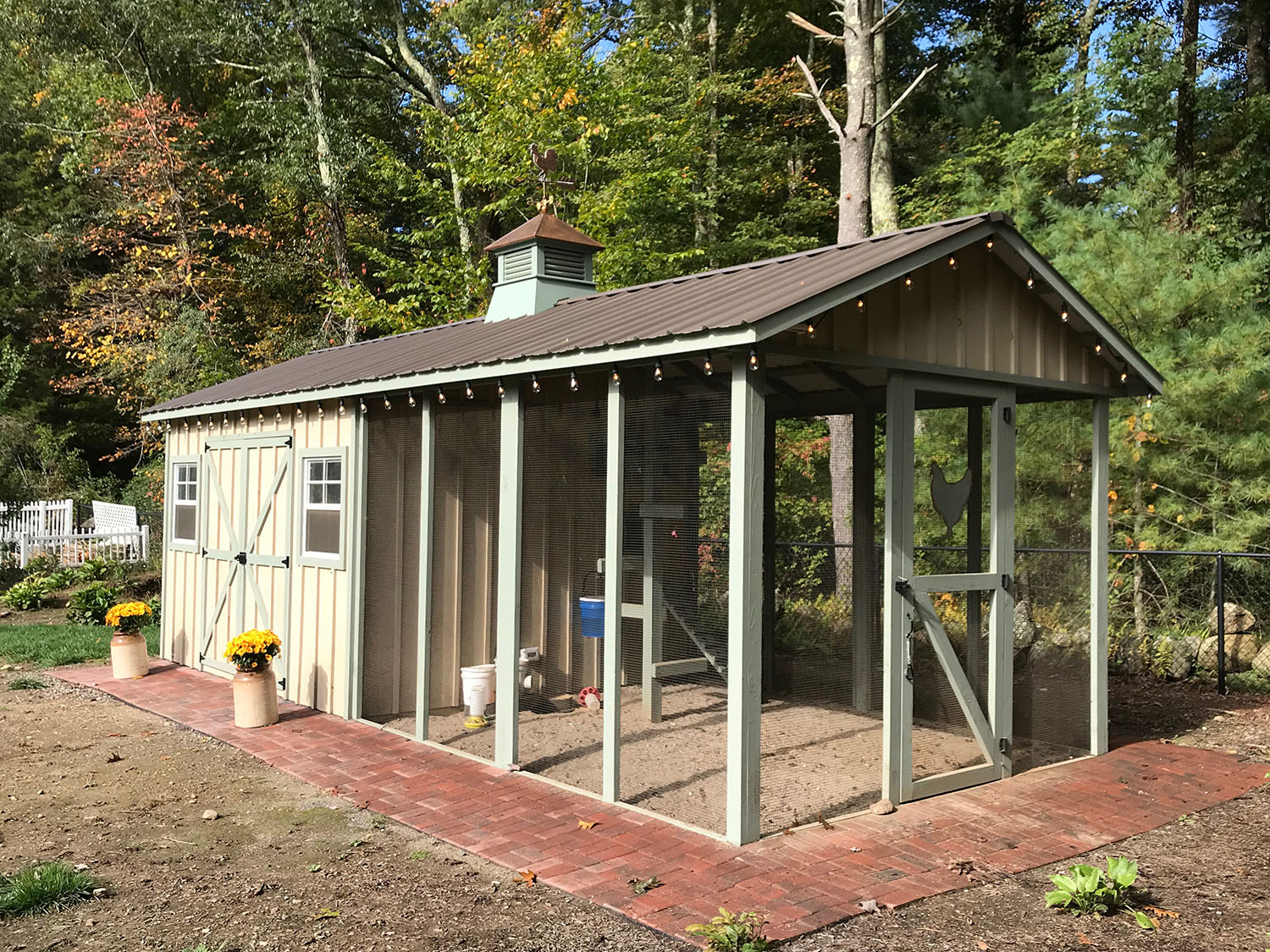 Carolina Coops - Custom Shed-Henhouse combo chicken coop (10)