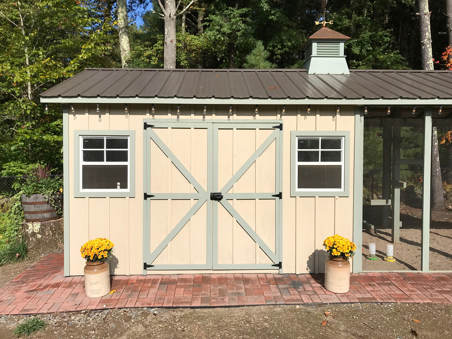 Carolina Coops - Custom Shed-Henhouse combo chicken coop (7)